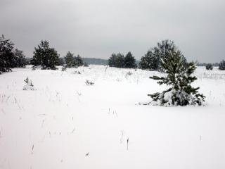 7-sneh-1.JPG