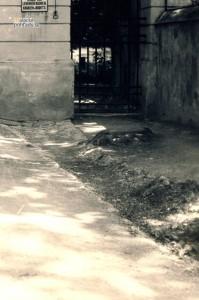 MP-velke-brana07