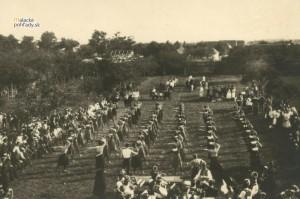 Verejné cvičenie členov orolskej jednoty v Malackách