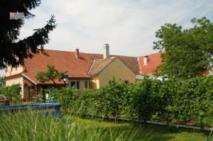 Pohľad na dom zo záhrady. Leto 2014