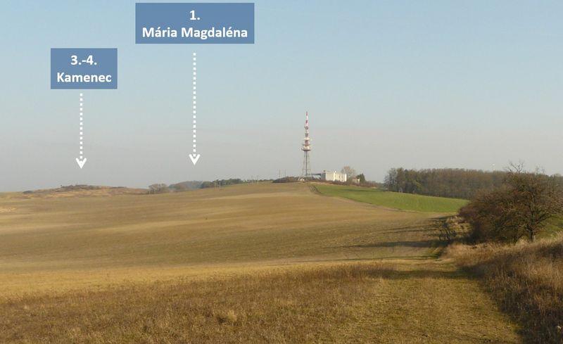 Vrchy Borskej nížiny