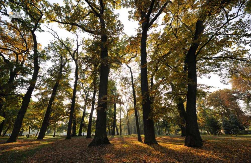 Zámocký park v Malackách