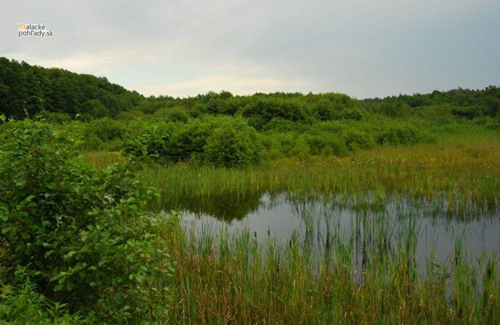 Likvidácia skládok na Marheckých rybníkoch