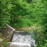 Čistenie neriadených skládok v okolí Troch dubov