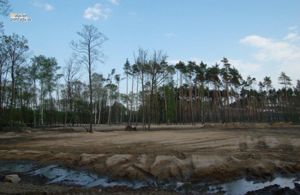 Certifikácia lesov FSC na Záhorí