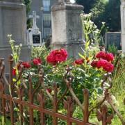 Náhrobok mlynárskej rodiny Lukáčovcov na starom cintoríne v Malackách