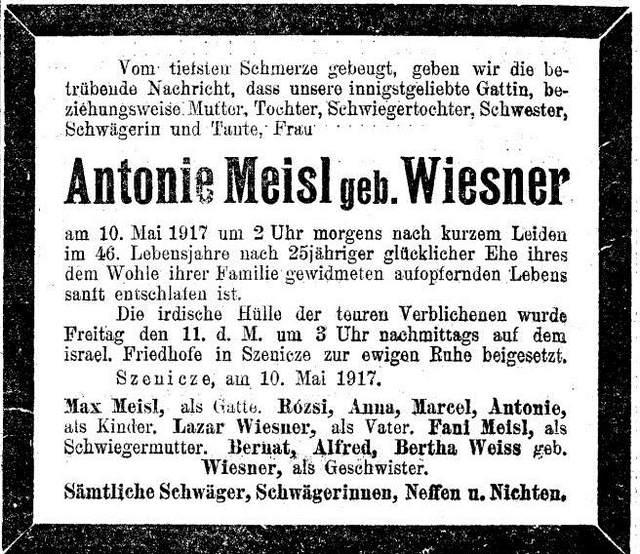 Antonie Meisl, Wiesner