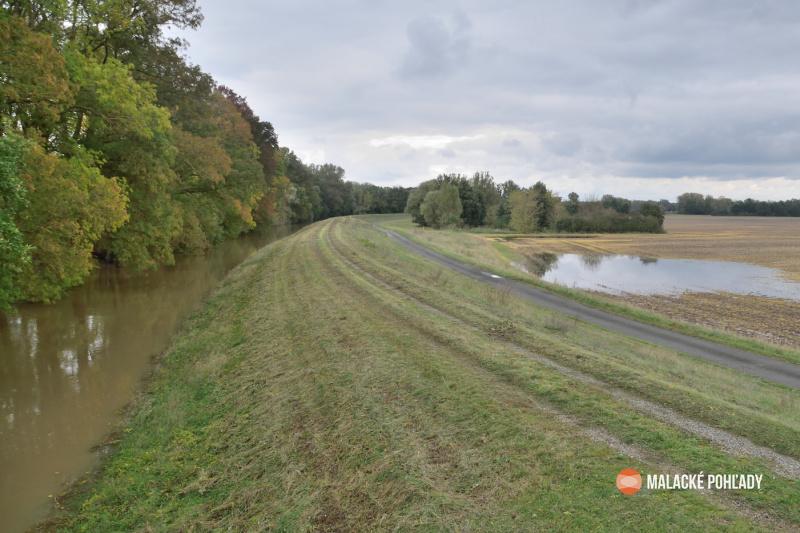 Hrádza pri rieke Morava, 2020